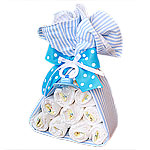 Blue Stork Bundle